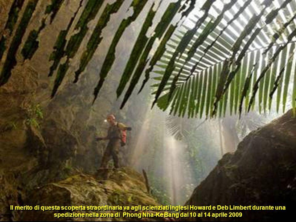 Il merito di questa scoperta straordinaria va agli scienziati inglesi Howard e Deb Limbert durante una spedizione nella zona di Phong Nha-Ke Bang dal 10 al 14 aprile 2009..........................................................................