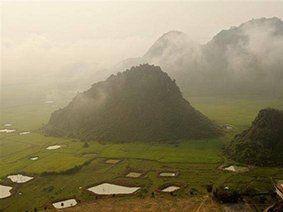 Doline precipitate hanno dato vita ad una mini-giungla 400 mt sotto la terra Le doline sopravvivono sotto la superficie quando, a seguito della caduta di una parte del tetto della grotta, la luce solare continua ad arrivare e crea un ecosistema nuovo e unico.