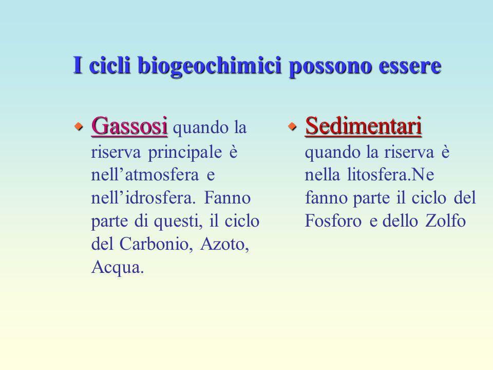 cicli biogeochimici La trasformazione si realizza attraverso i cicli biogeochimici