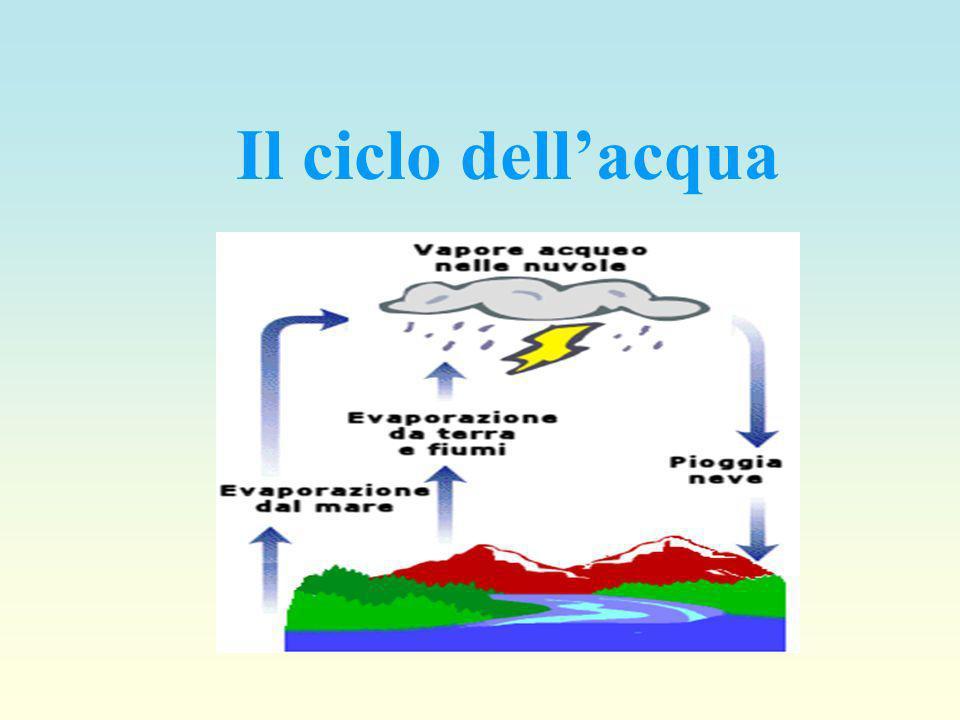 I cicli biogeochimici possono essere w Gassosi w Gassosi quando la riserva principale è nellatmosfera e nellidrosfera. Fanno parte di questi, il ciclo