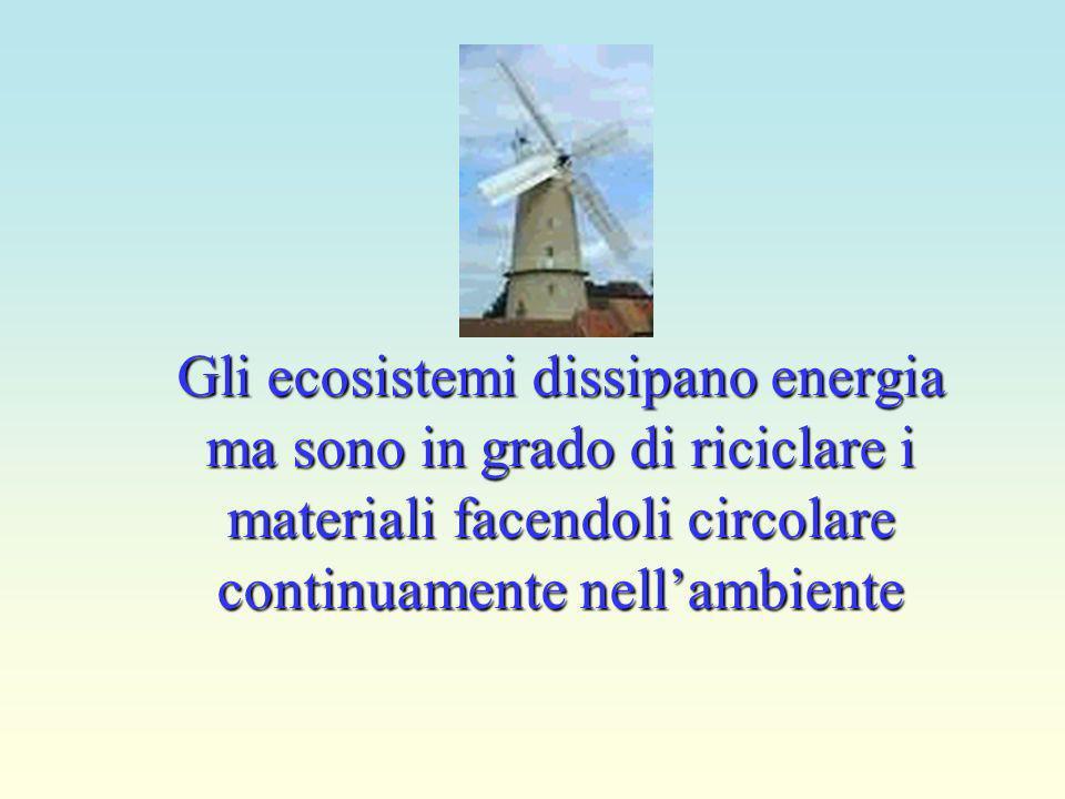Gli ecosistemi dissipano energia ma sono in grado di riciclare i materiali facendoli circolare continuamente nellambiente