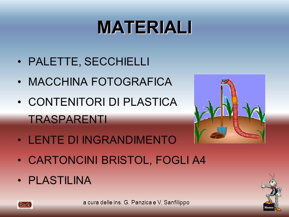 a cura delle ins. G. Panzica e V. Sanfilippo MATERIALI PALETTE, SECCHIELLI MACCHINA FOTOGRAFICA CONTENITORI DI PLASTICA TRASPARENTI LENTE DI INGRANDIM