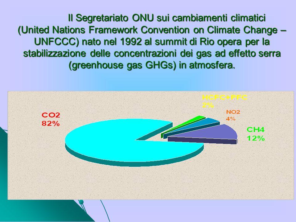 Il Segretariato ONU sui cambiamenti climatici (United Nations Framework Convention on Climate Change – UNFCCC) nato nel 1992 al summit di Rio opera pe