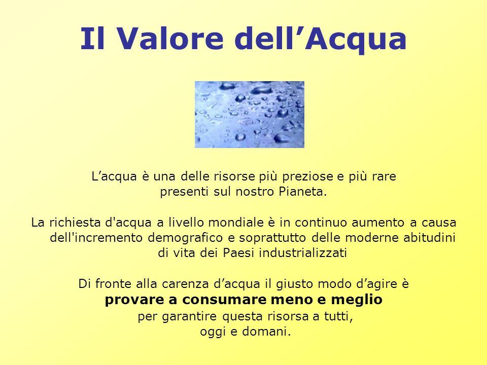 Il Valore dellAcqua Lacqua è una delle risorse più preziose e più rare presenti sul nostro Pianeta. La richiesta d'acqua a livello mondiale è in conti
