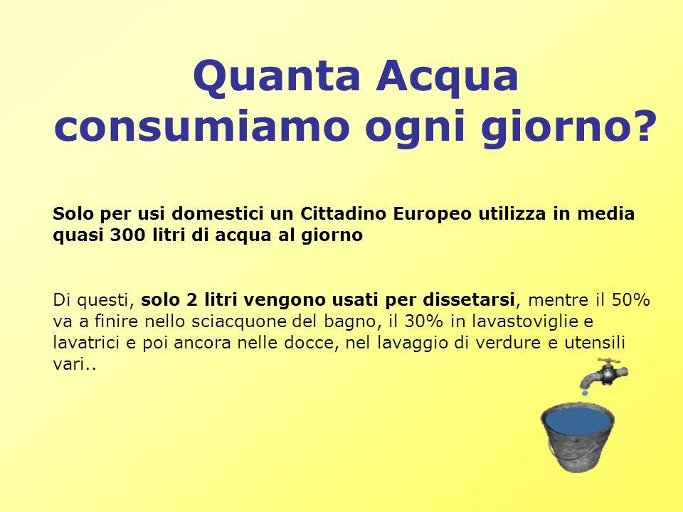 Quanta Acqua consumiamo ogni giorno? Solo per usi domestici un Cittadino Europeo utilizza in media quasi 300 litri di acqua al giorno Di questi, solo