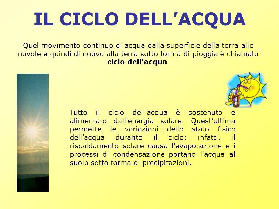 IL CICLO DELLACQUA Tutto il ciclo dell'acqua è sostenuto e alimentato dall'energia solare. Questultima permette le variazioni dello stato fisico della