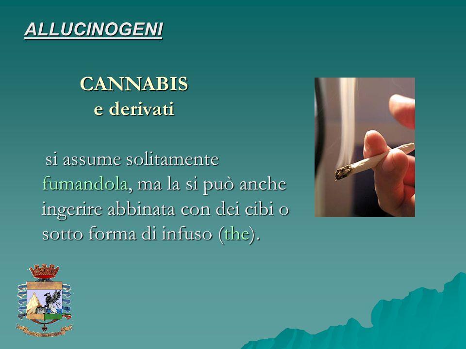 si assume solitamente fumandola, ma la si può anche ingerire abbinata con dei cibi o sotto forma di infuso (the). si assume solitamente fumandola, ma