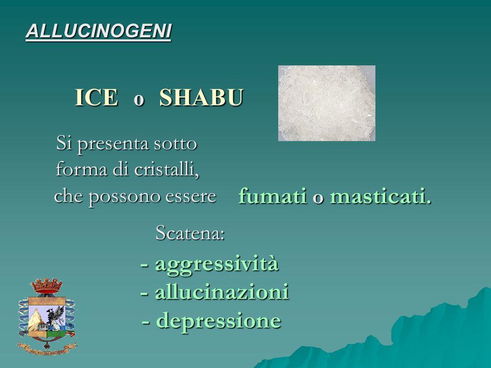 Si presenta sotto forma di cristalli, che possono essere fumati o masticati. Scatena: - aggressività - allucinazioni - depressione ALLUCINOGENI ICE o