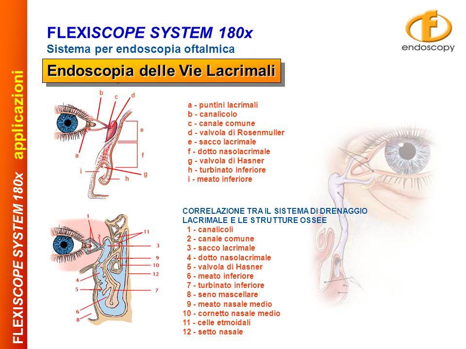 Assemblaggio Manipoli chirurgici FLEXISCOPE SYSTEM 180x Sistema per endoscopia oftalmica Endoscopia delle Vie Lacrimali