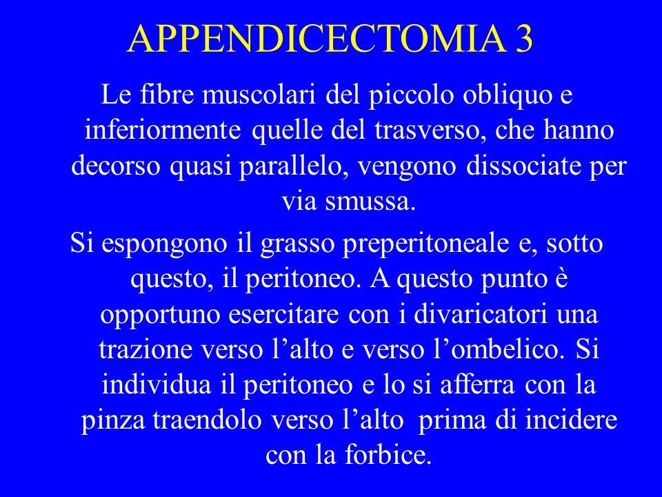 APPENDICECTOMIA 3 Le fibre muscolari del piccolo obliquo e inferiormente quelle del trasverso, che hanno decorso quasi parallelo, vengono dissociate p