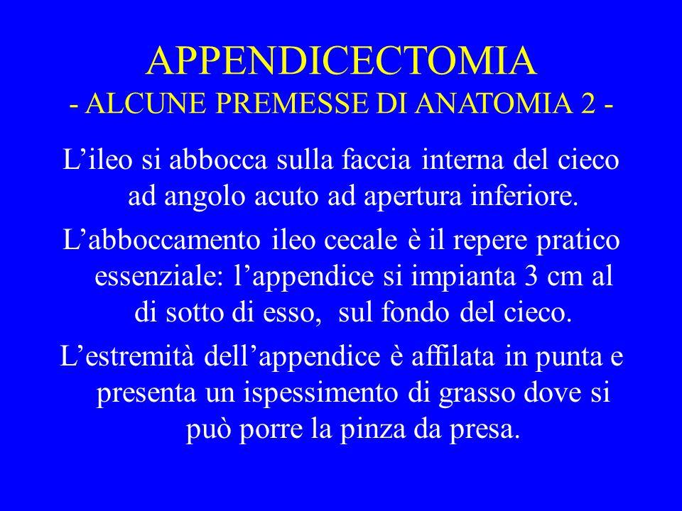 APPENDICECTOMIA - ALCUNE PREMESSE DI ANATOMIA 2 - Lileo si abbocca sulla faccia interna del cieco ad angolo acuto ad apertura inferiore. Labboccamento