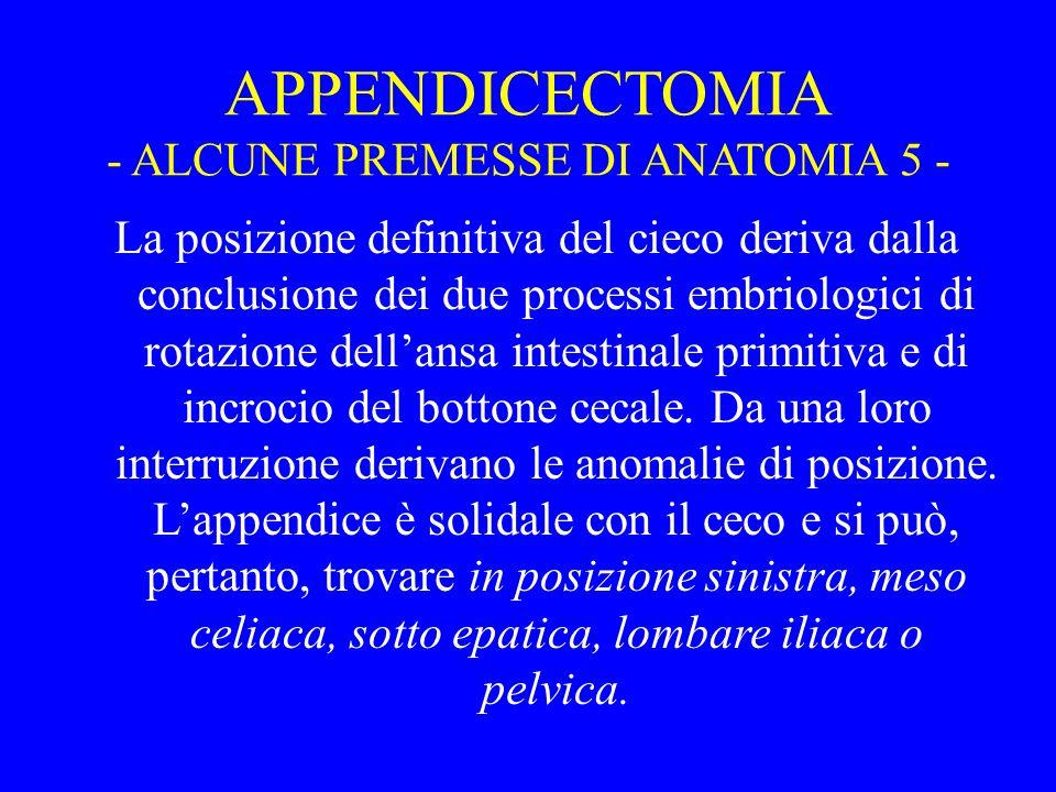 APPENDICECTOMIA - ALCUNE PREMESSE DI ANATOMIA 5 - La posizione definitiva del cieco deriva dalla conclusione dei due processi embriologici di rotazion