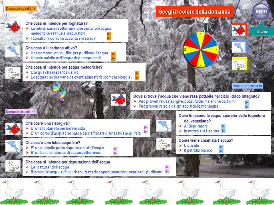 Domande casella 13 Domande casella 14 Domande casella 15 Casella 16: inquinamento dellacqua, torna alla partenza Perché la maggior parte dellacqua pre