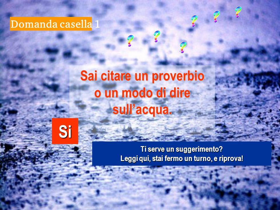 Domanda casella 1 Sai citare un proverbio o un modo di dire sullacqua.