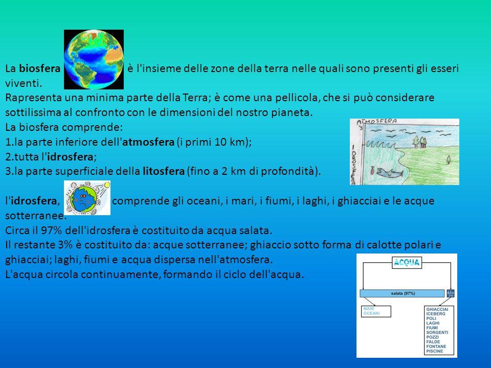 La biosfera è l'insieme delle zone della terra nelle quali sono presenti gli esseri viventi. Rapresenta una minima parte della Terra; è come una pelli