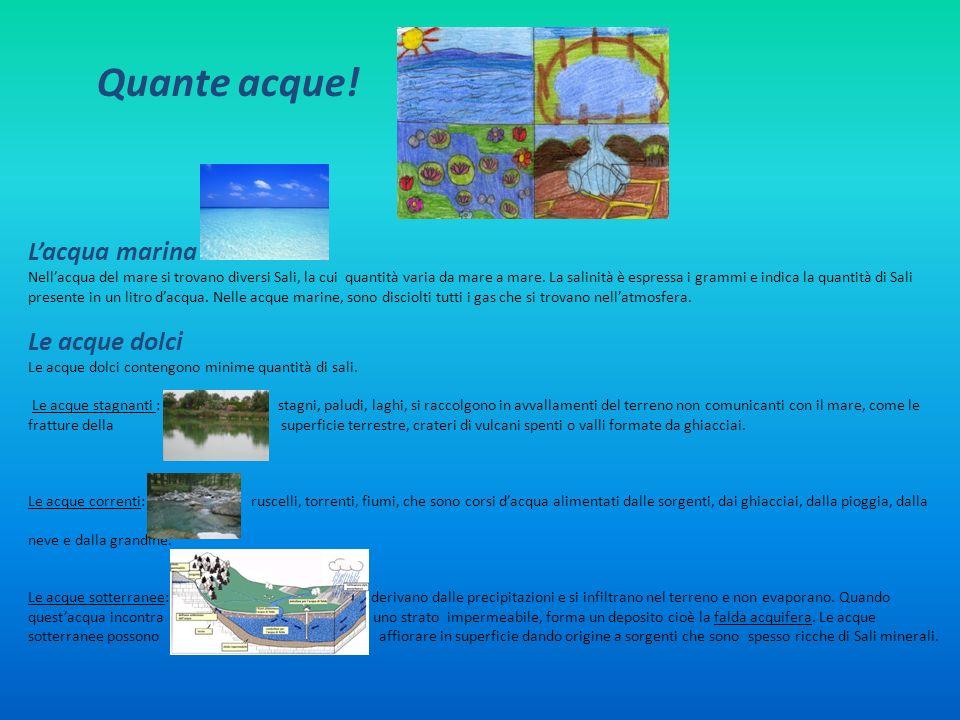 Quante acque! Lacqua marina Nellacqua del mare si trovano diversi Sali, la cui quantità varia da mare a mare. La salinità è espressa i grammi e indica