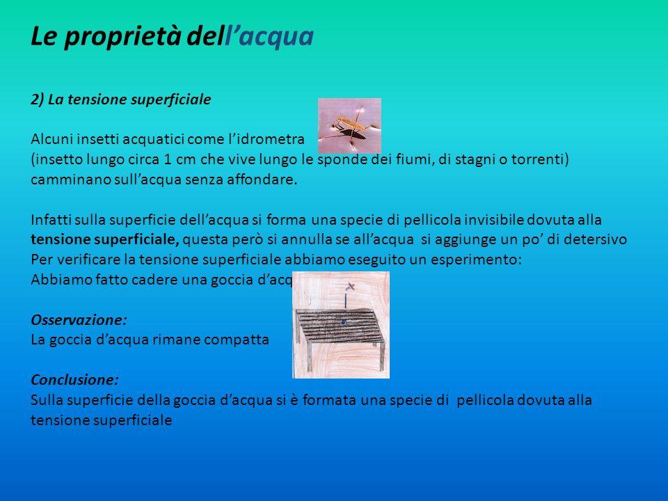 Le proprietà dellacqua 2) La tensione superficiale Alcuni insetti acquatici come lidrometra (insetto lungo circa 1 cm che vive lungo le sponde dei fiu