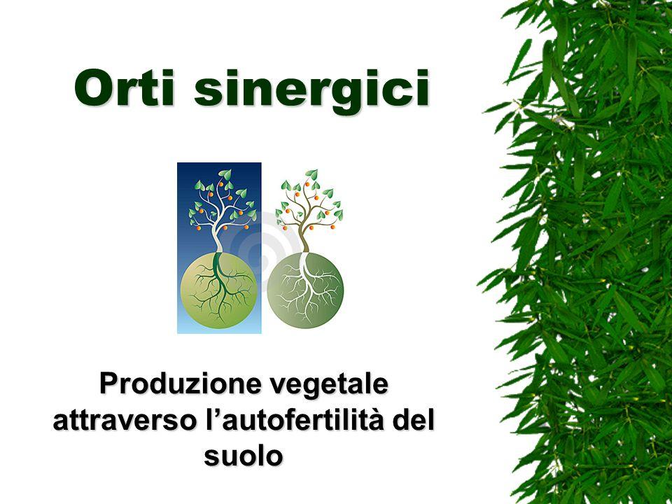 Orti sinergici Produzione vegetale attraverso lautofertilità del suolo