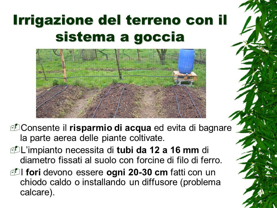 Irrigazione del terreno con il sistema a goccia Consente il risparmio di acqua ed evita di bagnare la parte aerea delle piante coltivate.
