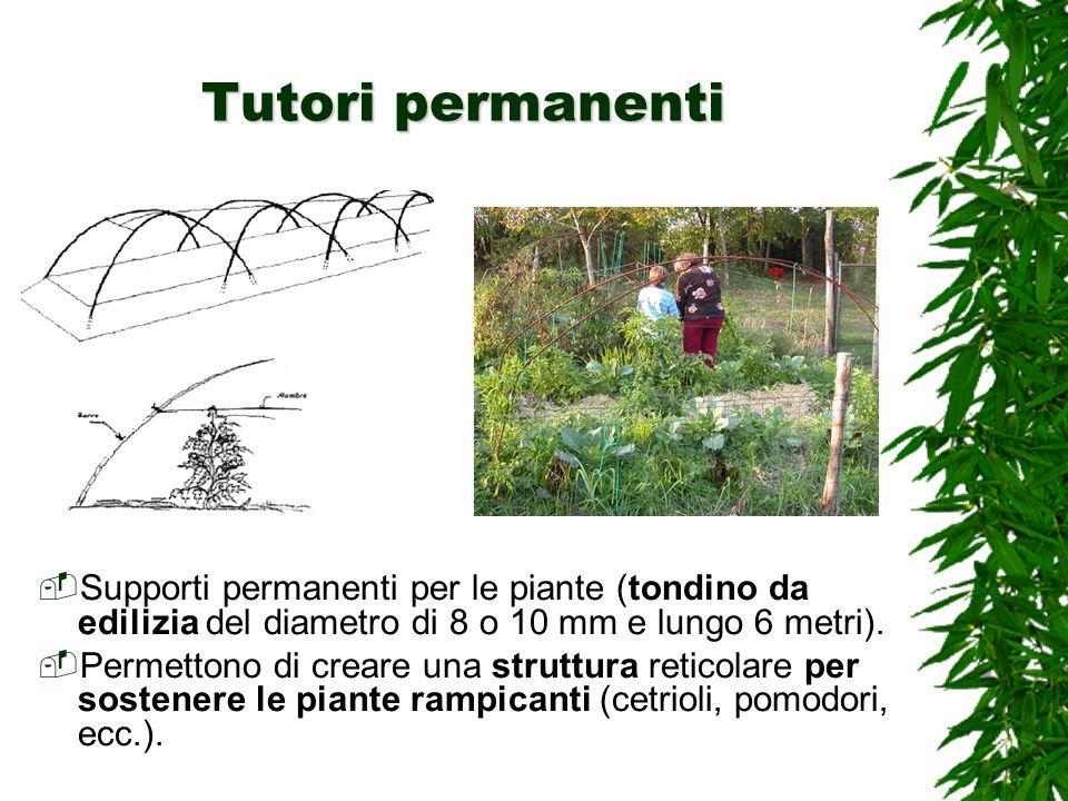 Tutori permanenti Supporti permanenti per le piante (tondino da edilizia del diametro di 8 o 10 mm e lungo 6 metri).