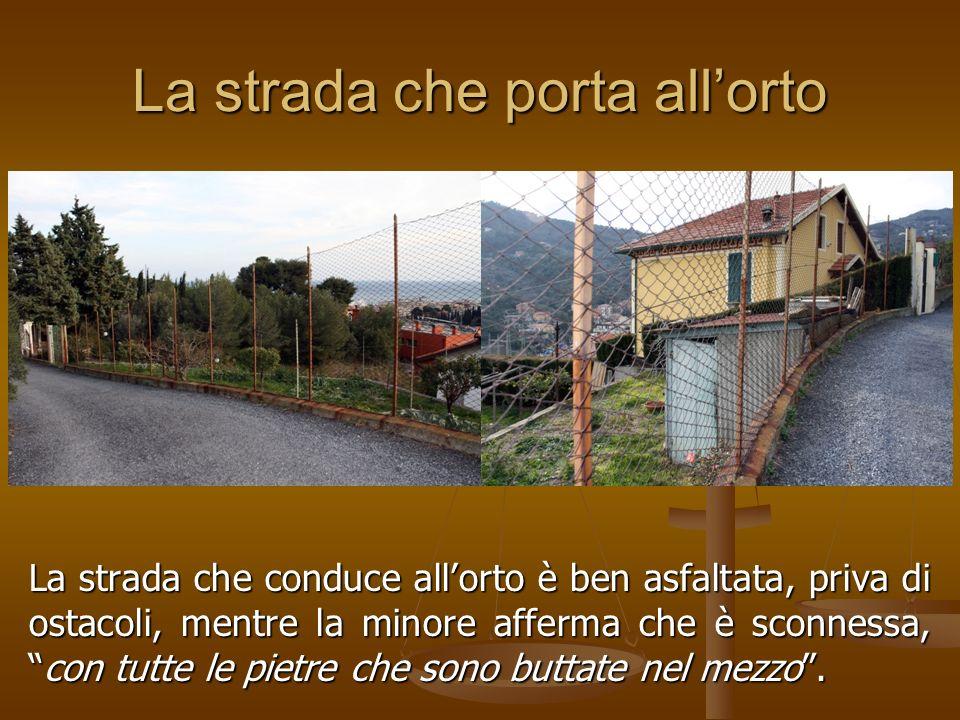 La strada che porta allorto La strada che conduce allorto è ben asfaltata, priva di ostacoli, mentre la minore afferma che è sconnessa,con tutte le pietre che sono buttate nel mezzo.