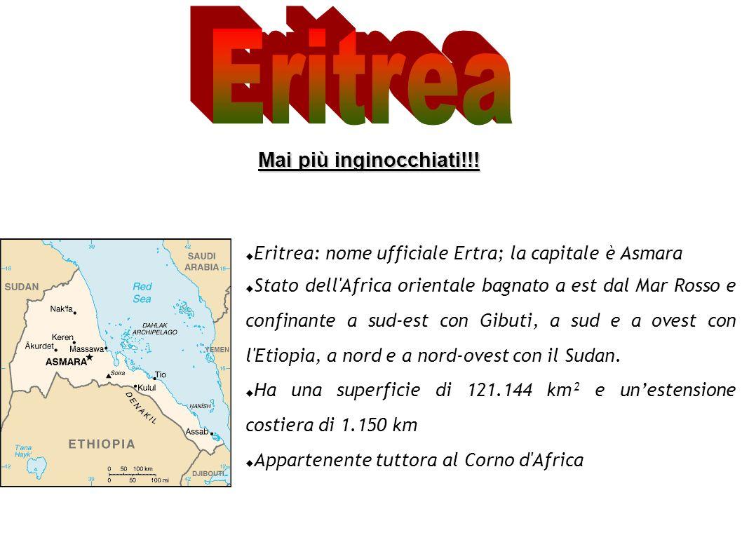- Geografia L Eritrea è situata nel Corno d Africa che a sua volta è formato da Eritrea, Etiopia, Gibuti ed in fine Somalia.