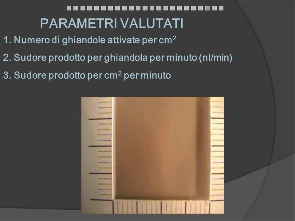 PARAMETRI VALUTATI 1. Numero di ghiandole attivate per cm 2 2. Sudore prodotto per ghiandola per minuto (nl/min) 3. Sudore prodotto per cm 2 per minut
