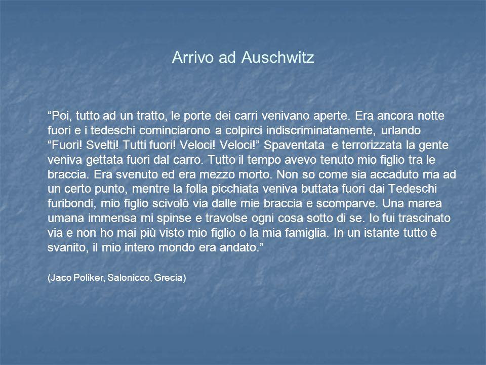 Arrivo ad Auschwitz Poi, tutto ad un tratto, le porte dei carri venivano aperte.