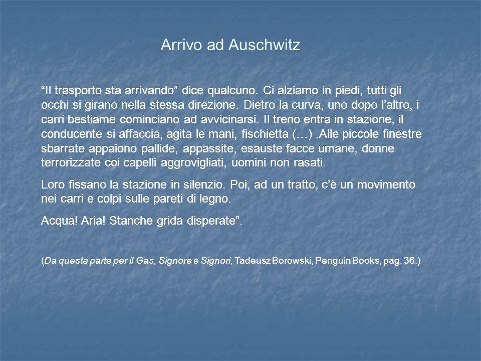 Arrivo ad Auschwitz Il trasporto sta arrivando dice qualcuno.