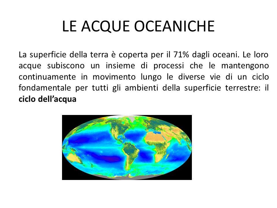 LE ACQUE OCEANICHE La superficie della terra è coperta per il 71% dagli oceani. Le loro acque subiscono un insieme di processi che le mantengono conti