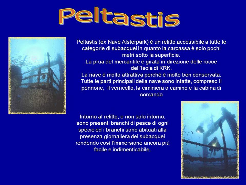 Peltastis (ex Nave Alsterpark) è un relitto accessibile a tutte le categorie di subacquei in quanto la carcassa è solo pochi metri sotto la superficie.