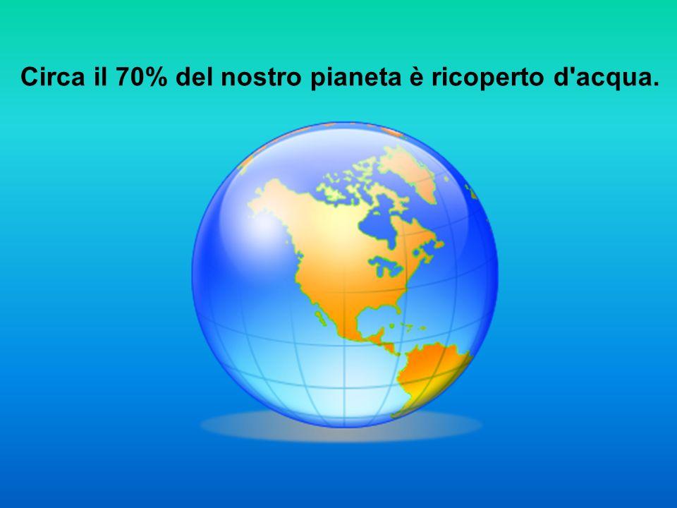 Circa il 70% del nostro pianeta è ricoperto d'acqua.