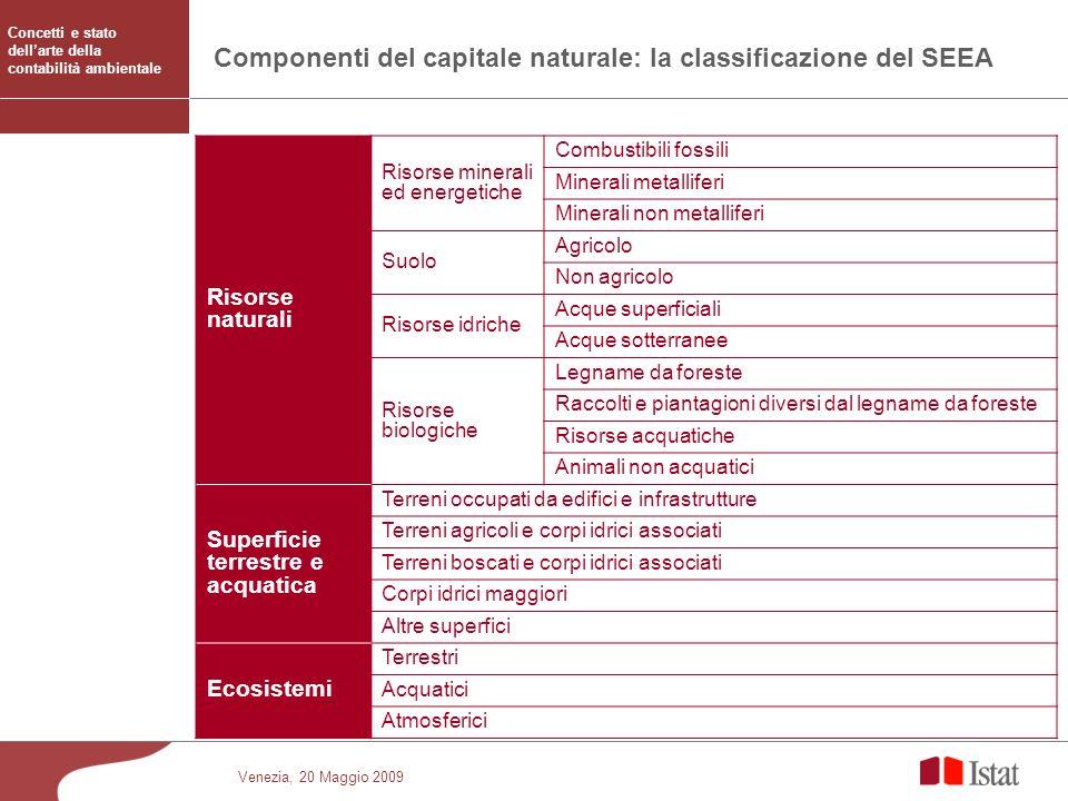 Venezia, 20 Maggio 2009 Componenti del capitale naturale: la classificazione del SEEA Risorse naturali Risorse minerali ed energetiche Combustibili fo