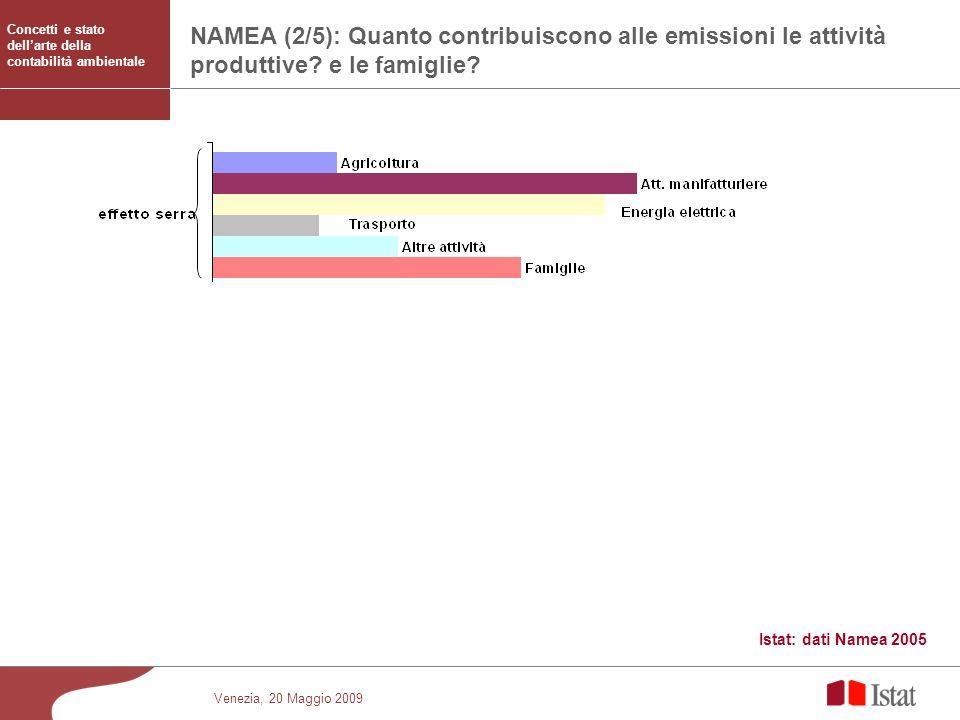 Venezia, 20 Maggio 2009 NAMEA - Emissioni atmosferiche delle famiglie e delle attività economiche, per inquinante – Anni 1990 e 2003 NAMEA (2/5): Quan