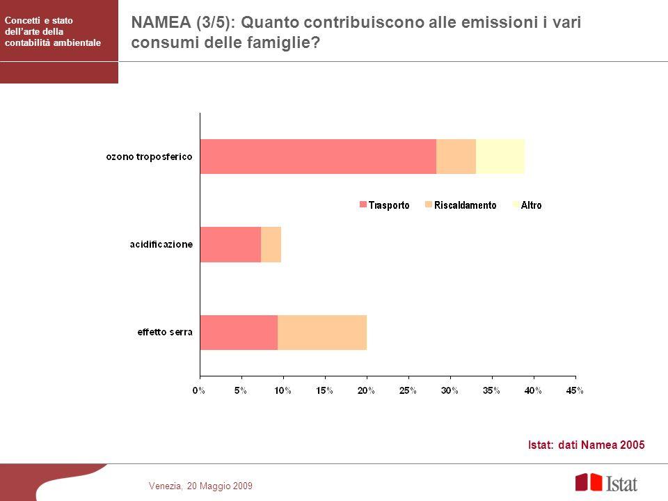 Venezia, 20 Maggio 2009 NAMEA (3/5): Quanto contribuiscono alle emissioni i vari consumi delle famiglie? Istat: dati Namea 2005 Concetti e stato della