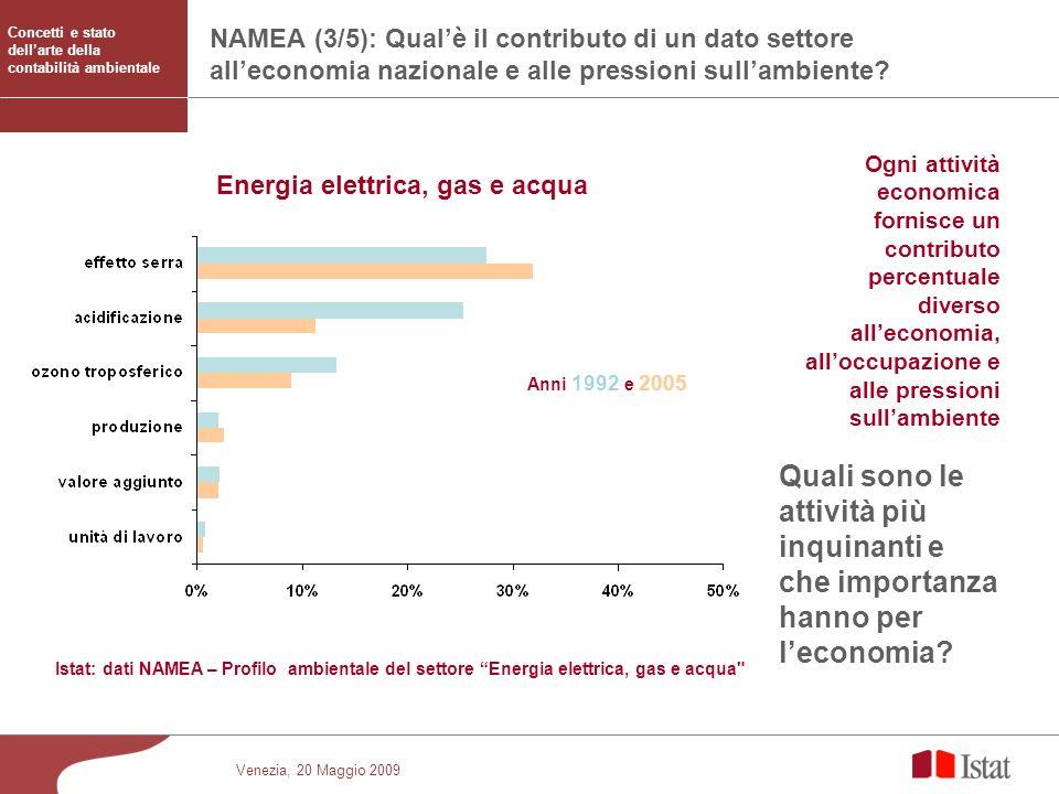 Venezia, 20 Maggio 2009 NAMEA (3/5): Qualè il contributo di un dato settore alleconomia nazionale e alle pressioni sullambiente? Istat: dati NAMEA – P