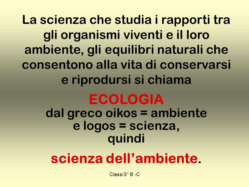 Classi 5° B -C La scienza che studia i rapporti tra gli organismi viventi e il loro ambiente, gli equilibri naturali che consentono alla vita di conse