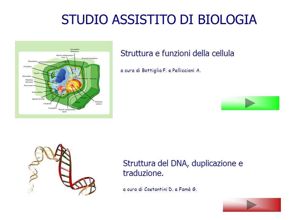 Struttura del DNA, duplicazione e traduzione. a cura di Costantini D. e Famà G. Struttura e funzioni della cellula a cura di Bottiglia F. e Pelliccion