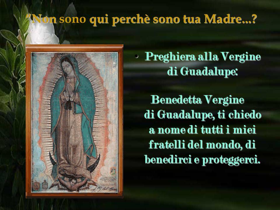 3. La Vergine ha un nastro con dei fiocchi sul ventre, è incinta per indicare che Dio vuole che Gesù nasca in America, nel cuore di ogni Americano.