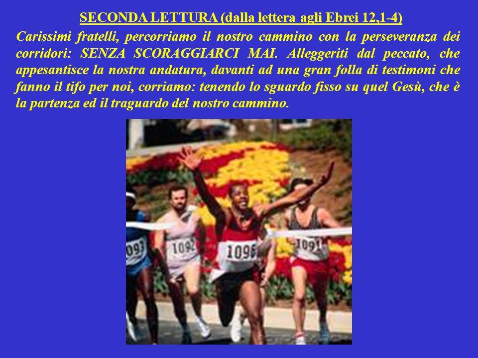 SECONDA LETTURA (dalla lettera agli Ebrei 12,1-4) Carissimi fratelli, percorriamo il nostro cammino con la perseveranza dei corridori: SENZA SCORAGGIARCI MAI.