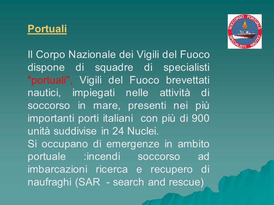 Portuali Il Corpo Nazionale dei Vigili del Fuoco dispone di squadre di specialisti