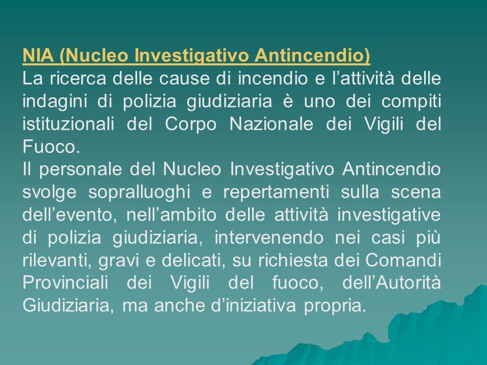 NIA (Nucleo Investigativo Antincendio) La ricerca delle cause di incendio e lattività delle indagini di polizia giudiziaria è uno dei compiti istituzi