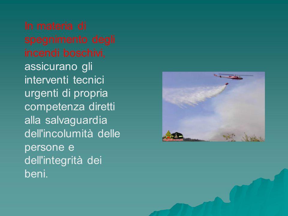 In materia di spegnimento degli incendi boschivi, assicurano gli interventi tecnici urgenti di propria competenza diretti alla salvaguardia dell'incol