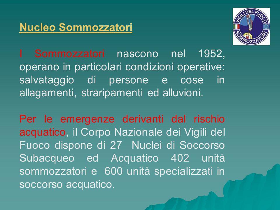 Nucleo Sommozzatori I Sommozzatori nascono nel 1952, operano in particolari condizioni operative: salvataggio di persone e cose in allagamenti, strari