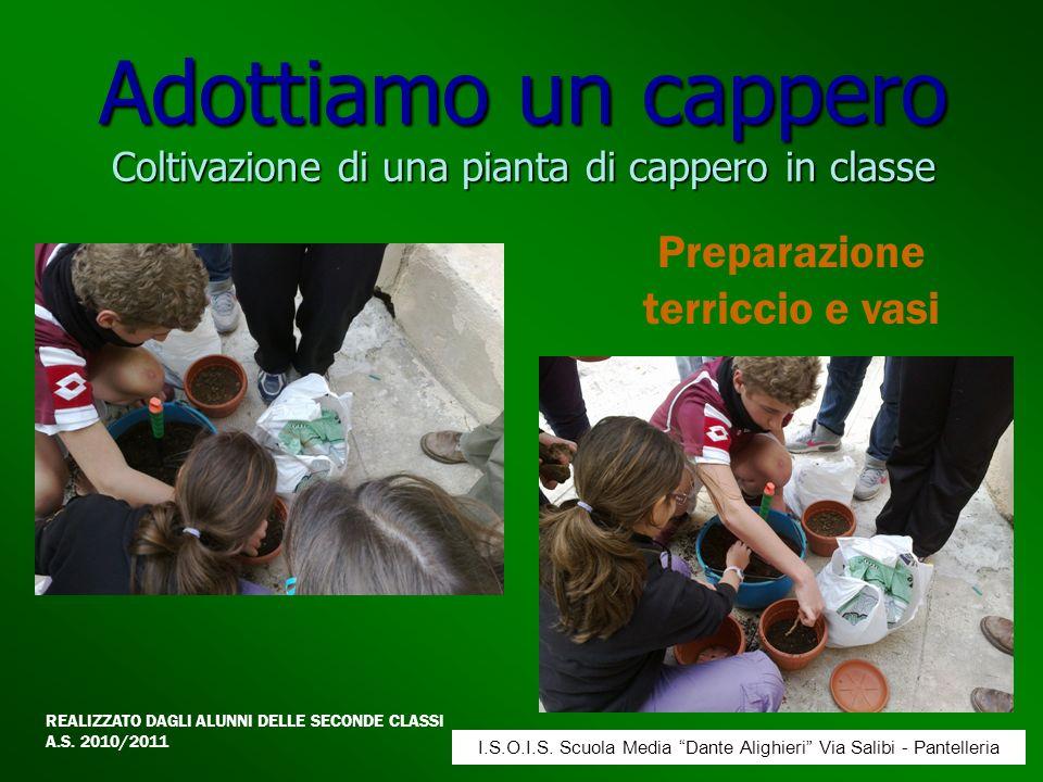 Adottiamo un cappero Coltivazione di una pianta di cappero in classe Preparazione terriccio e vasi REALIZZATO DAGLI ALUNNI DELLE SECONDE CLASSI A.S. 2