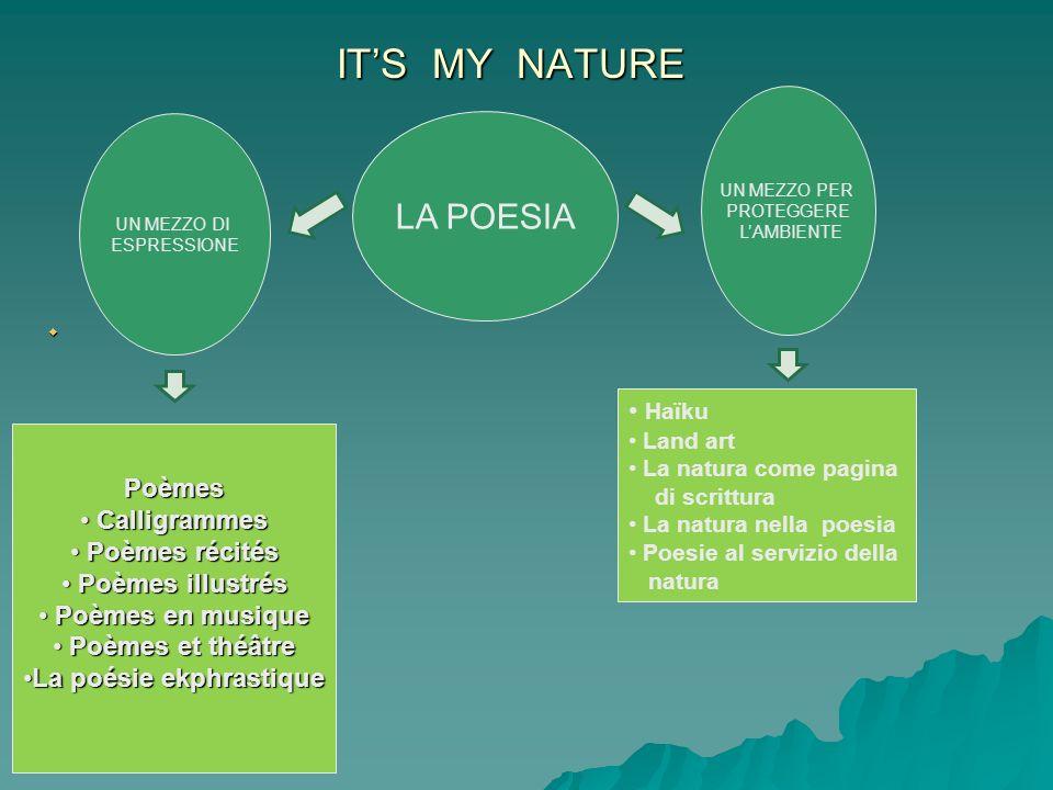 ITS MY NATURE LA POESIA UN MEZZO DI ESPRESSIONE UN MEZZO PER PROTEGGERE LAMBIENTE Haïku Land art La natura come pagina di scrittura La natura nella po