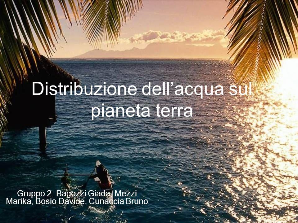 Distribuzione dellacqua sul pianeta terra Gruppo 2: Bagozzi Giada, Mezzi Marika, Bosio Davide, Cunaccia Bruno