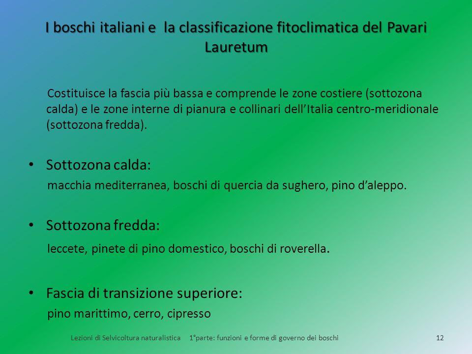 I boschi italiani e la classificazione fitoclimatica del Pavari Lauretum Costituisce la fascia più bassa e comprende le zone costiere (sottozona calda