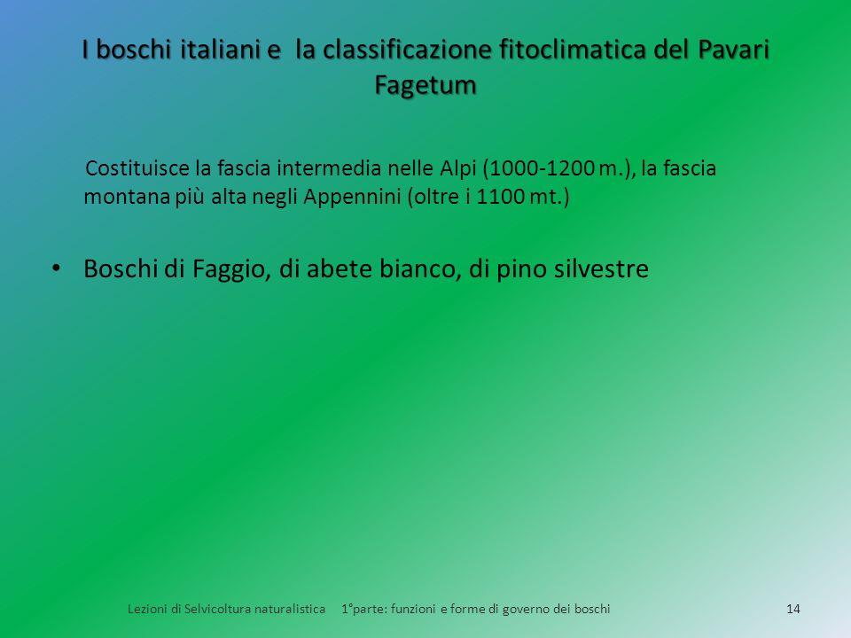 I boschi italiani e la classificazione fitoclimatica del Pavari Fagetum Lezioni di Selvicoltura naturalistica 1°parte: funzioni e forme di governo dei