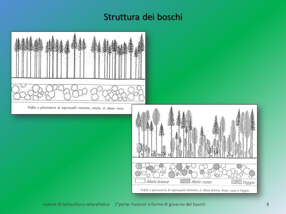 Struttura dei boschi Lezioni di Selvicoltura naturalistica 1°parte: funzioni e forme di governo dei boschi8